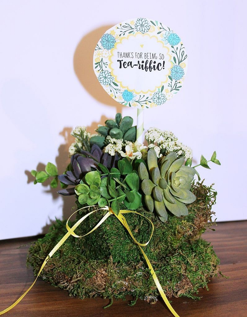 Unique Moss Covered Teacup Planter Idea for Succulents