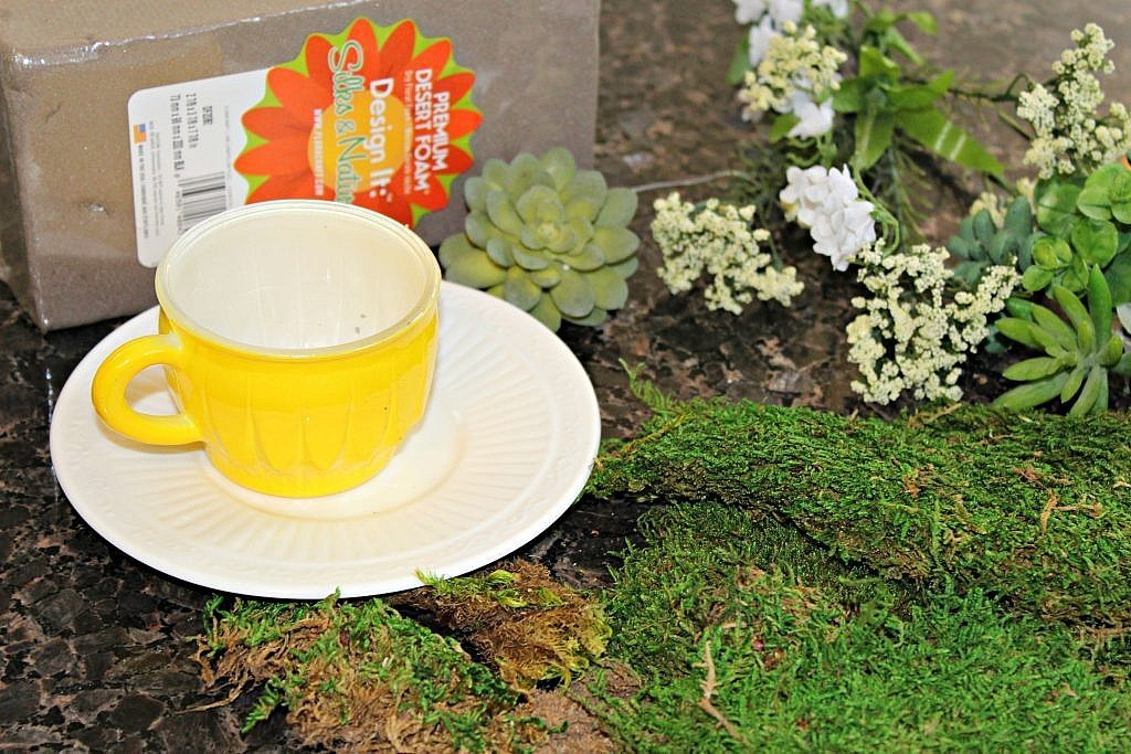DIY Moss Covered Succulent Teacup Planter